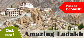 Best vacations in Ladakh